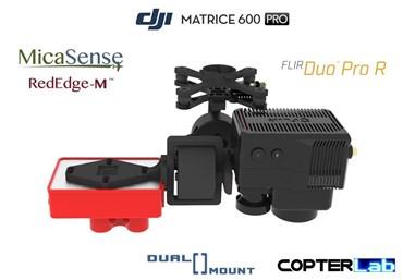 2 Axis Micasense RedEdge M + Flir Duo Pro R Dual NDVI Camera Stabilizer for DJI Matrice 600 Pro