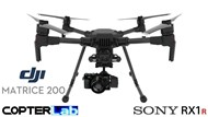 2 Axis Sony RX 1 R2 RX1R2 Micro Skyport Camera Stabilizer for DJI Matrice 200 M200