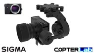 2 Axis Sigma FP Brushless Camera Stabilizer